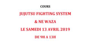Cours de Fighting et de Ne-Waza – 13.04.19